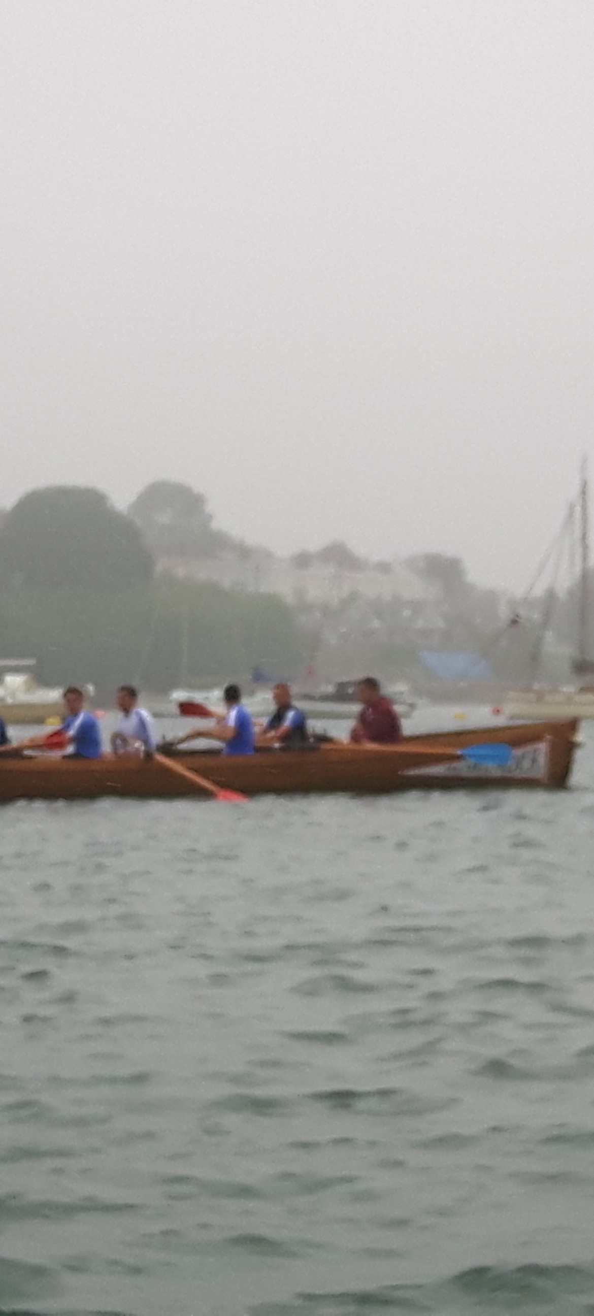 Our regatta